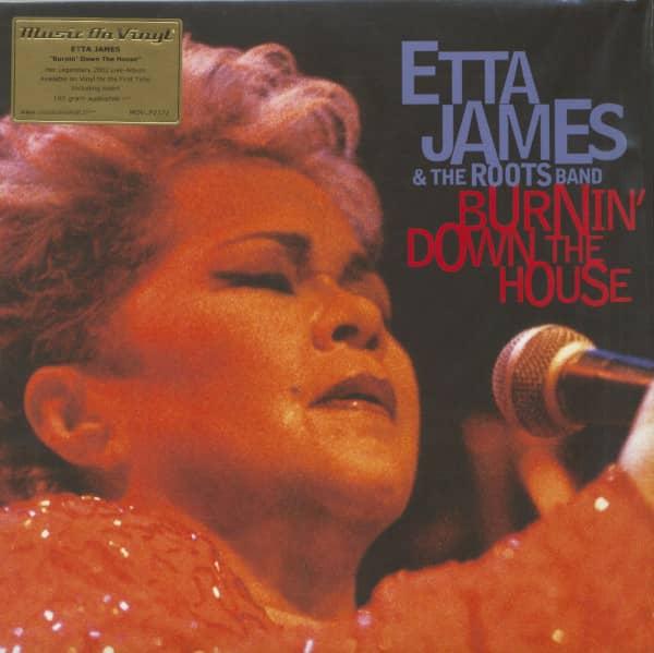 Burnin' Down The House (2-LP, 180g Vinyl)