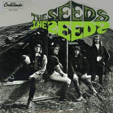 The Seeds (2-LP)
