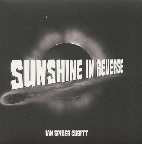 Sunshine In Reverse (LP)