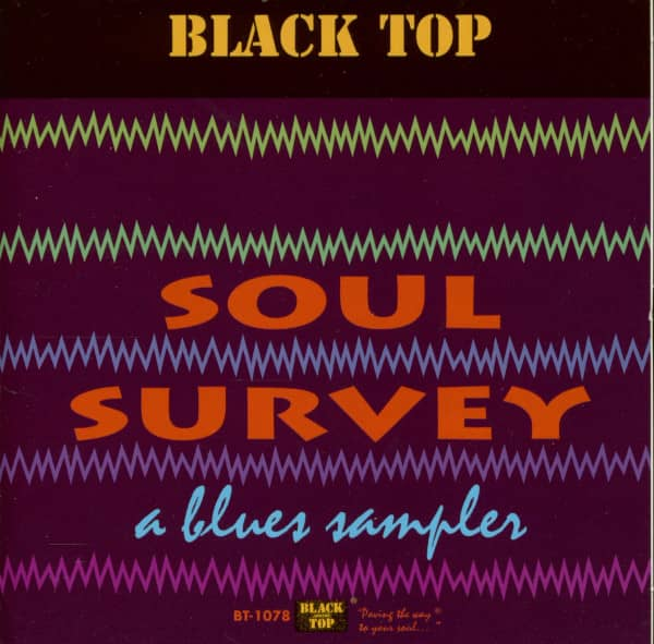 Soul Survey - A Blues Sampler (CD)