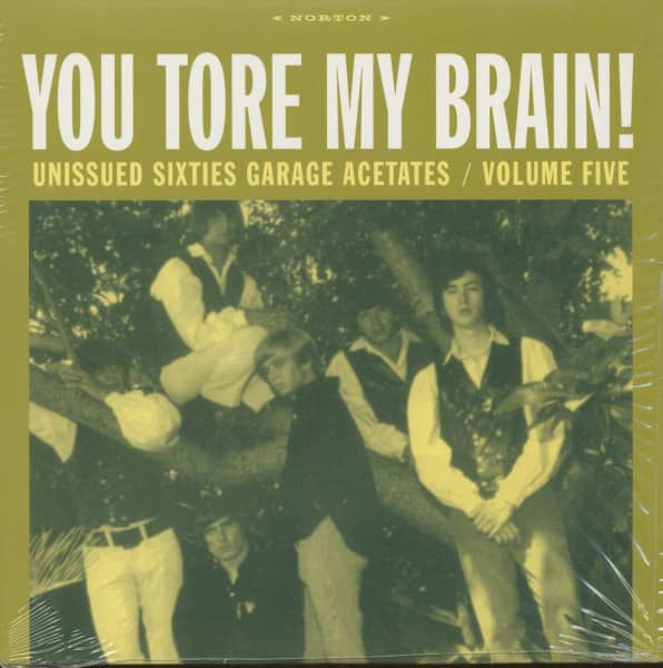 You Tore My Brain - Unissued Sixties Garage Acetates, Vol.5 (LP)