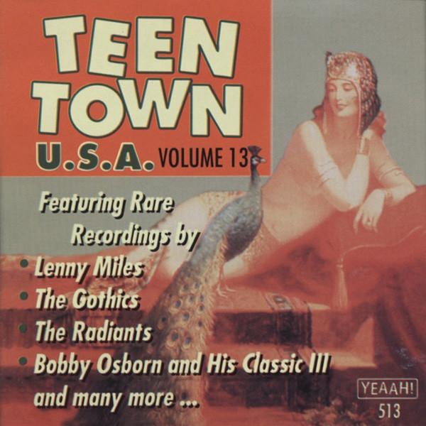 Vol.13, Teen Town USA