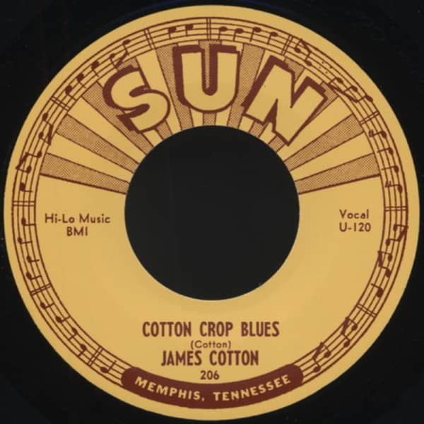 Hold Me In Your Arms b-w Cotton Crup Blues 7inch, 45rpm