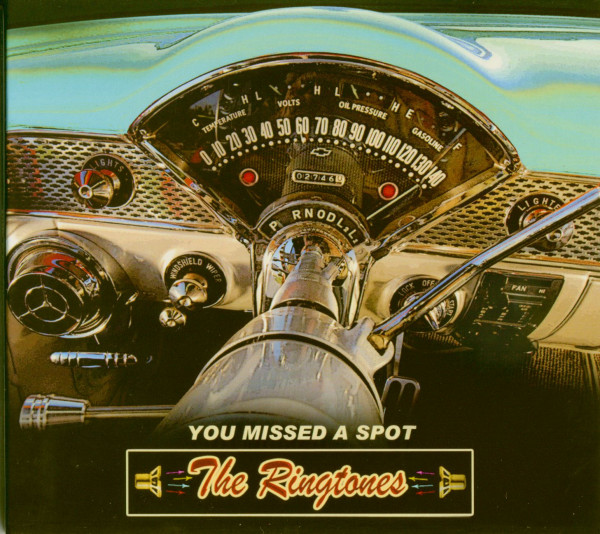 You Missed A Spot (CD)