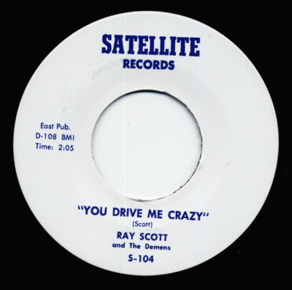 You Drive Me Crazy b-w Say Anything But Not Goodbye 7inch, 45rpm