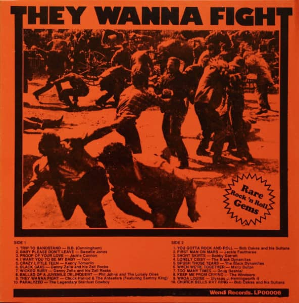 They Wanna Fight (LP)