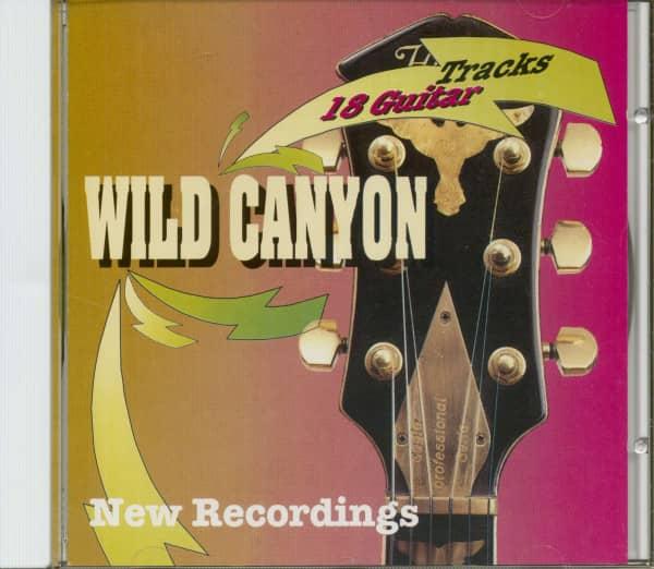 18 Guitar Tracks - New Recordings (CD)