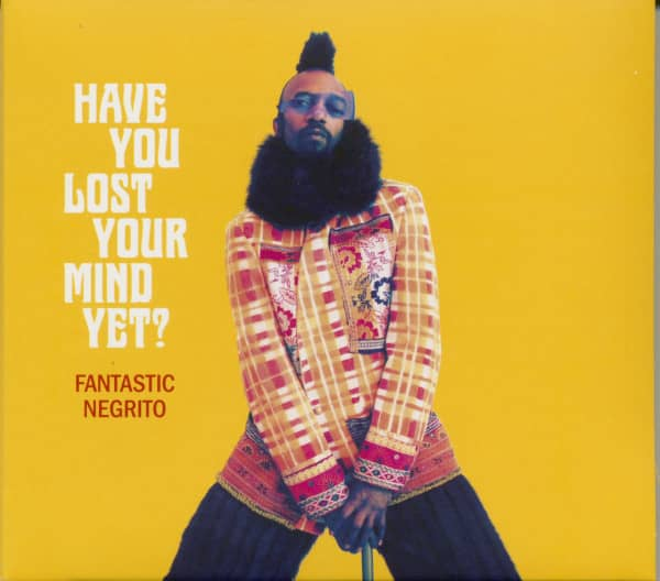 Have You Lost Your Mind Yet (CD)