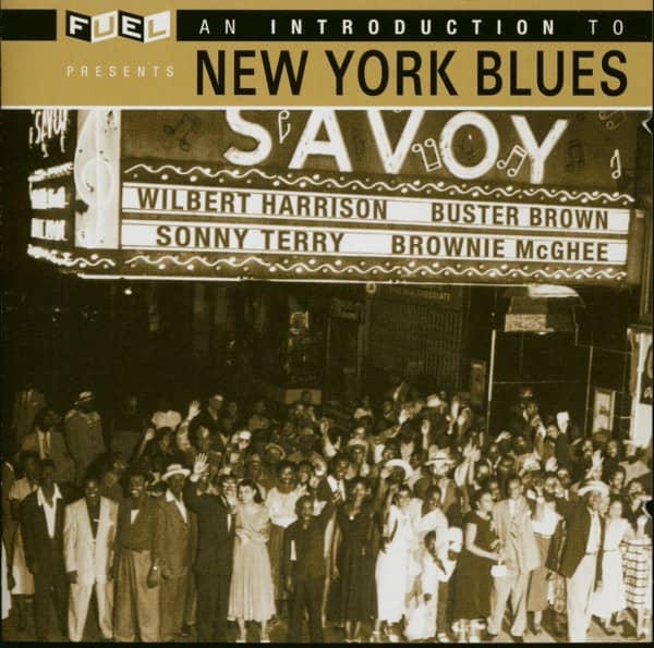 An Introduction To New York Blues (CD)